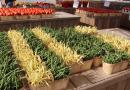 채식 인구도 늘었지만 육류소비도 늘었다
